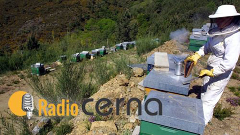 Radio Cerna 19mar18