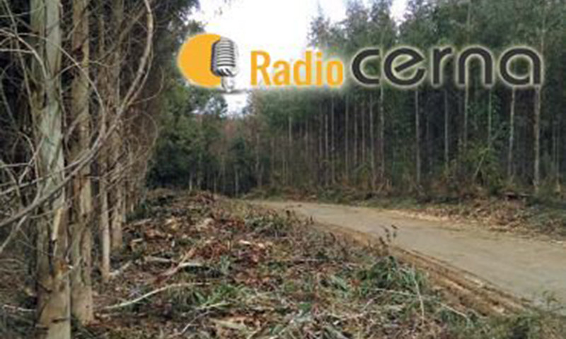 Radio Cerna 14may2018