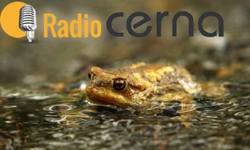 Radio Cerna 03out2018