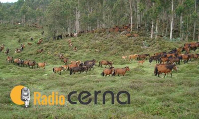 Radio Cerna 05mar2018