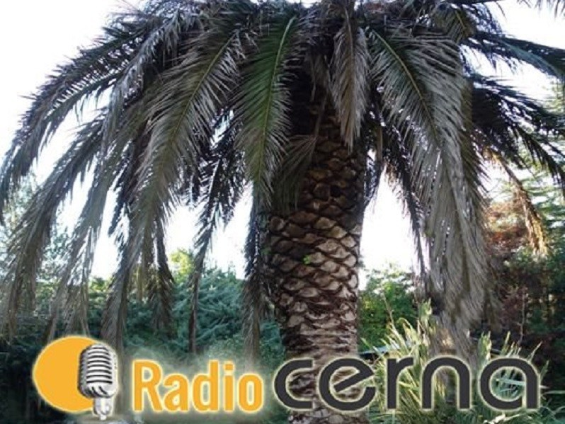Radio Cerna 13feb2019