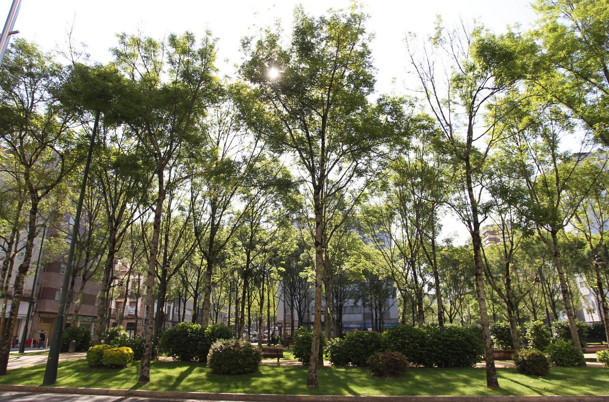 Renovaci n 39 de entidade 39 para los jardines de la plaza de for Los jardines esquelas